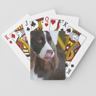 Adorable Springer Spanial Playing Cards