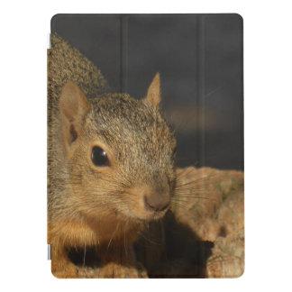 Adorable Squirrel iPad Pro Cover