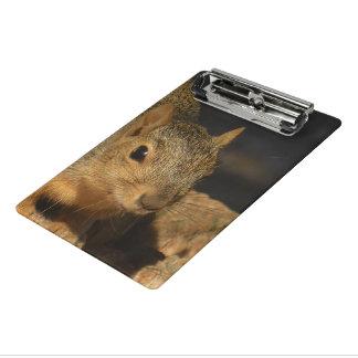 Adorable Squirrel Mini Clipboard