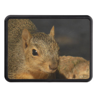 Adorable Squirrel Trailer Hitch Cover
