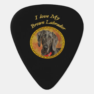 Adorable sweet brown labrador canine puppy dog guitar pick