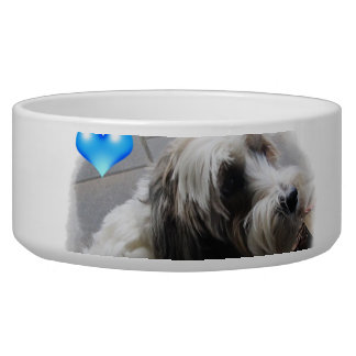 Adorable Tibetan Terrier with a heart dog food bow