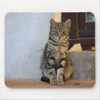 Adorable Tiger Cat Baby Mouse Pad