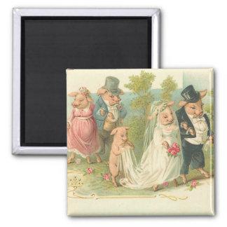 Adorable Vintage Pig Bride and Groom Square Magnet