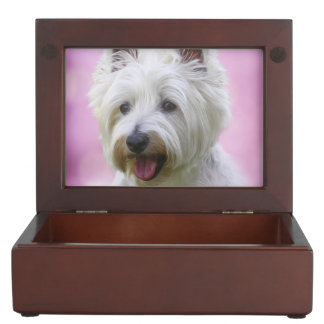 Adorable west highland white terrier keepsake box