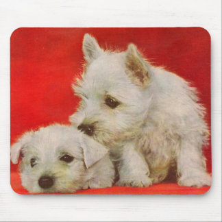 adorable white terrier puppies mouse pad