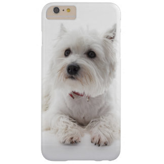 Adorable White West Highland Terrier Barely There iPhone 6 Plus Case