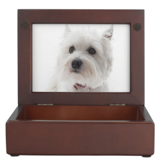 Adorable White West Highland Terrier Keepsake Box