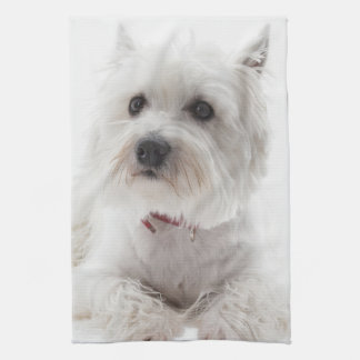Adorable White West Highland Terrier Kitchen Towel