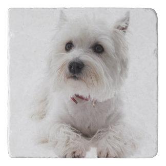 Adorable White West Highland Terrier Trivet