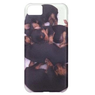 Adorable yorkie babies iPhone 5C case