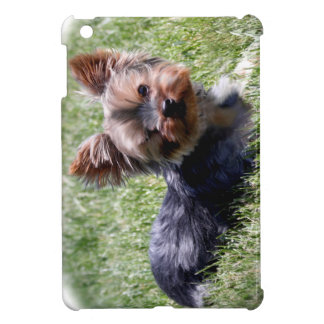 Adorable Yorkie Multiple Products Selected iPad Mini Cover