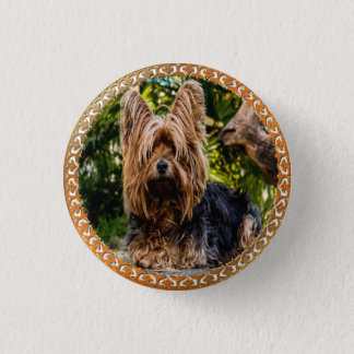 Adorable Yorkshire brown and black terrier 1 Inch Round Button