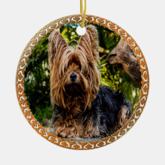 Adorable Yorkshire brown and black terrier Ceramic Ornament