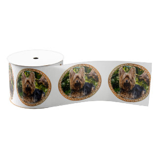 Adorable Yorkshire brown and black terrier Grosgrain Ribbon