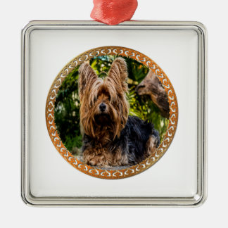 Adorable Yorkshire brown and black terrier Metal Ornament