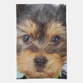 Adorable Yorkshire Terrier Kitchen Towel
