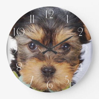Adorable Yorkshire Terrier Large Clock