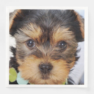 Adorable Yorkshire Terrier Paper Dinner Napkin
