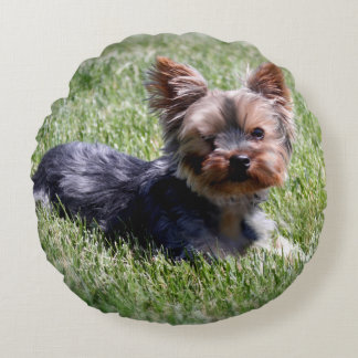 Adorable Yorkshire Terrier Round Pillow