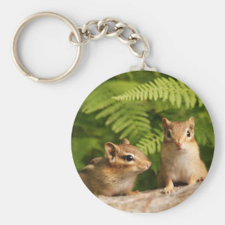 Adorably Curious Baby Chipmunks Basic Round Button Keychain