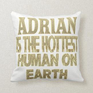 Adrian Pillow