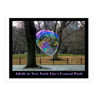 Adrift in New York City's Central Park Postcard