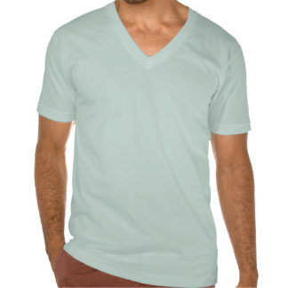 Adult Baby V-Neck T-shirts