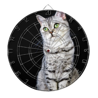 Adult british short hair cat on black background dartboard