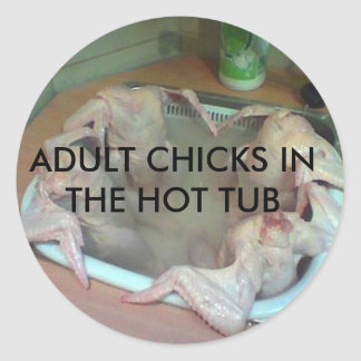 ADULT CHICKS IN THE HOT TUB ROUND STICKER