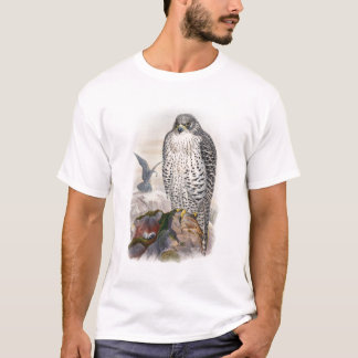 Adult Iceland Falcon Gould Birds of Great Britain T-Shirt