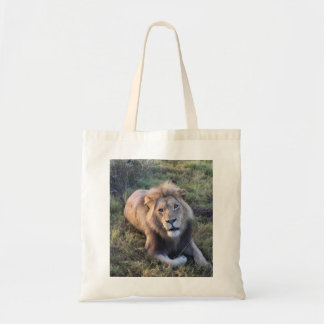 Adult lion tote