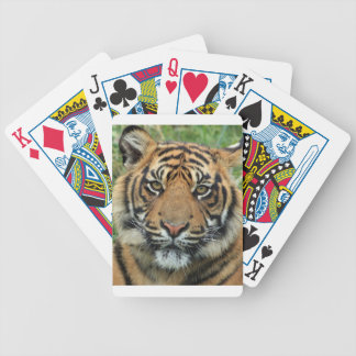 Adult Tiger Bicycle Playing Cards