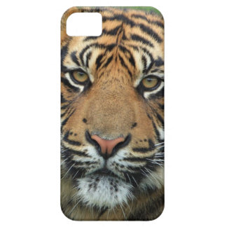 Adult Tiger Case For The iPhone 5