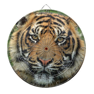 Adult Tiger Dartboard