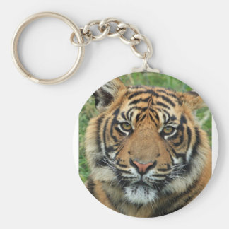 Adult Tiger Keychain