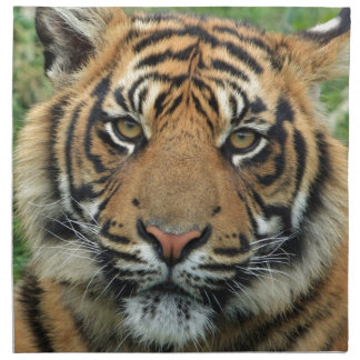 Adult Tiger Napkin