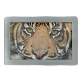 Adult Tiger Rectangular Belt Buckle