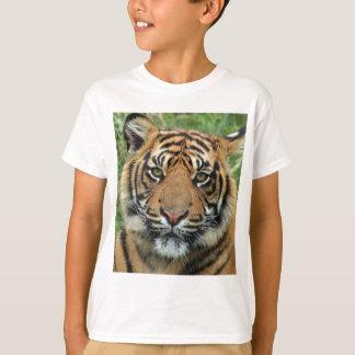 Adult Tiger T-Shirt