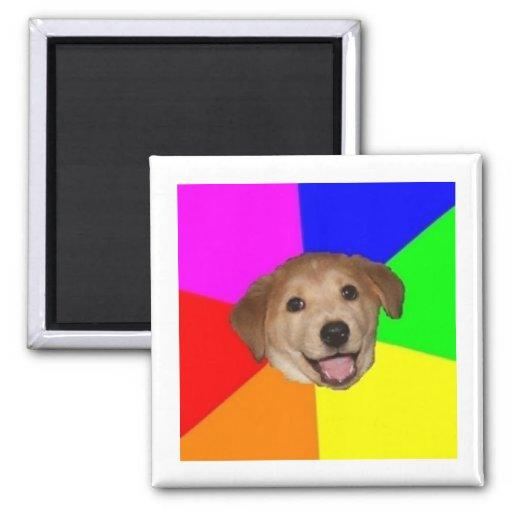 Advice Dog Advice Animal Meme Fridge Magnets
