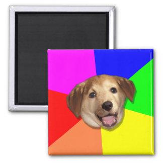 Advice Dog Meme Magnets