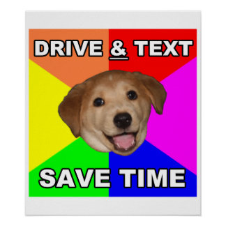 Advice Dog says: Drive & Text Poster