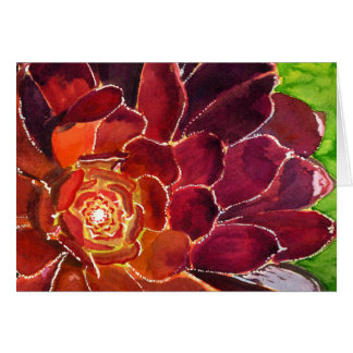 Aeonium watercolor card