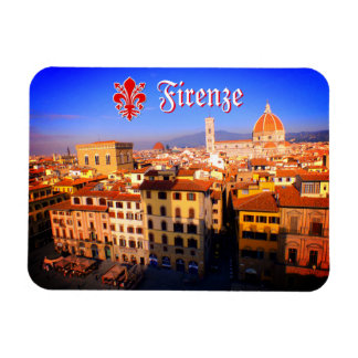 Aerial Image Of Florence, Italy Magnet