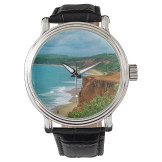 Aerial Seascape Scene Pipa Brazil Watch