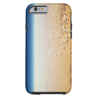 Aerial view of a desert tough iPhone 6 case