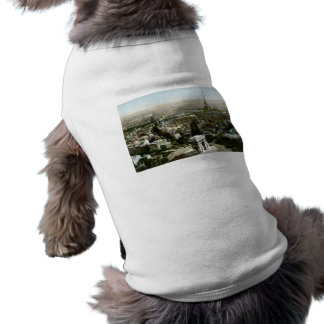 Aerial View of Paris, France Vintage Dog Clothes