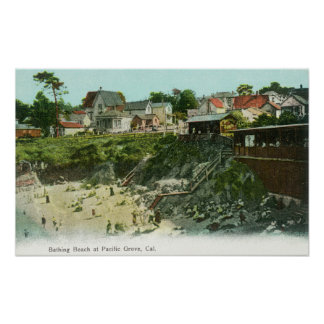 Aerial View of the Bathing Beach Poster
