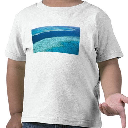 Aerial view of The Great Barrier Reef by the Shirt
