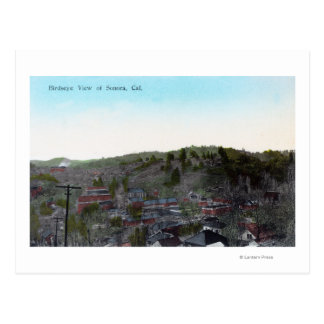 Aerial View of the TownSonora, CA Postcard